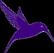 colibri détouré.png