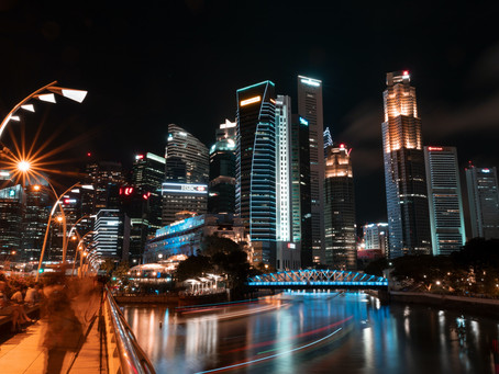 Business Services your Singapore company will need yearly