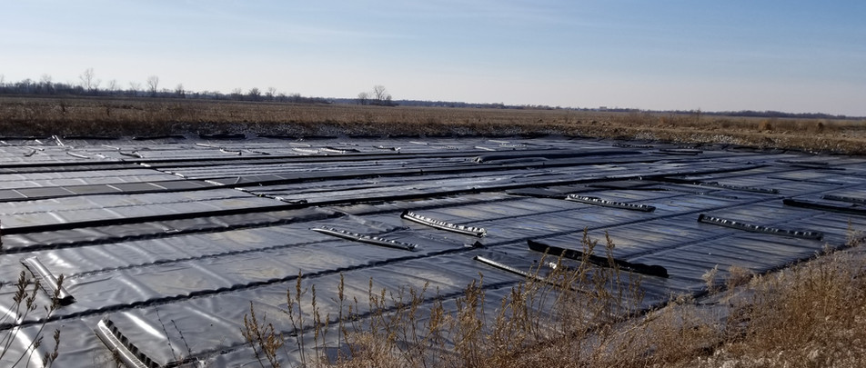 Lemna insulated lagoon cover