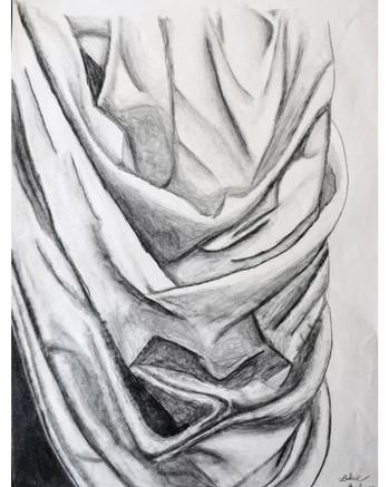 """""""Succulent folds"""" by Luke"""