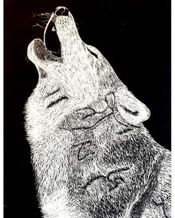 """Grey Wolf"" by Erin"