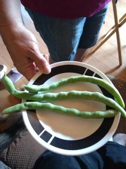 Massive green beans