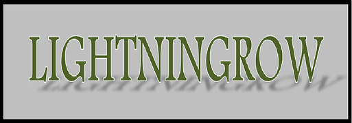 logo letterhead.png