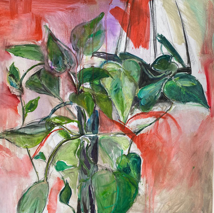 Plants on red