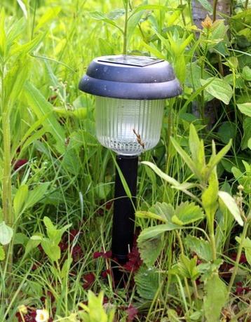 #solar #light #outdoor #garden #home #solarlight
