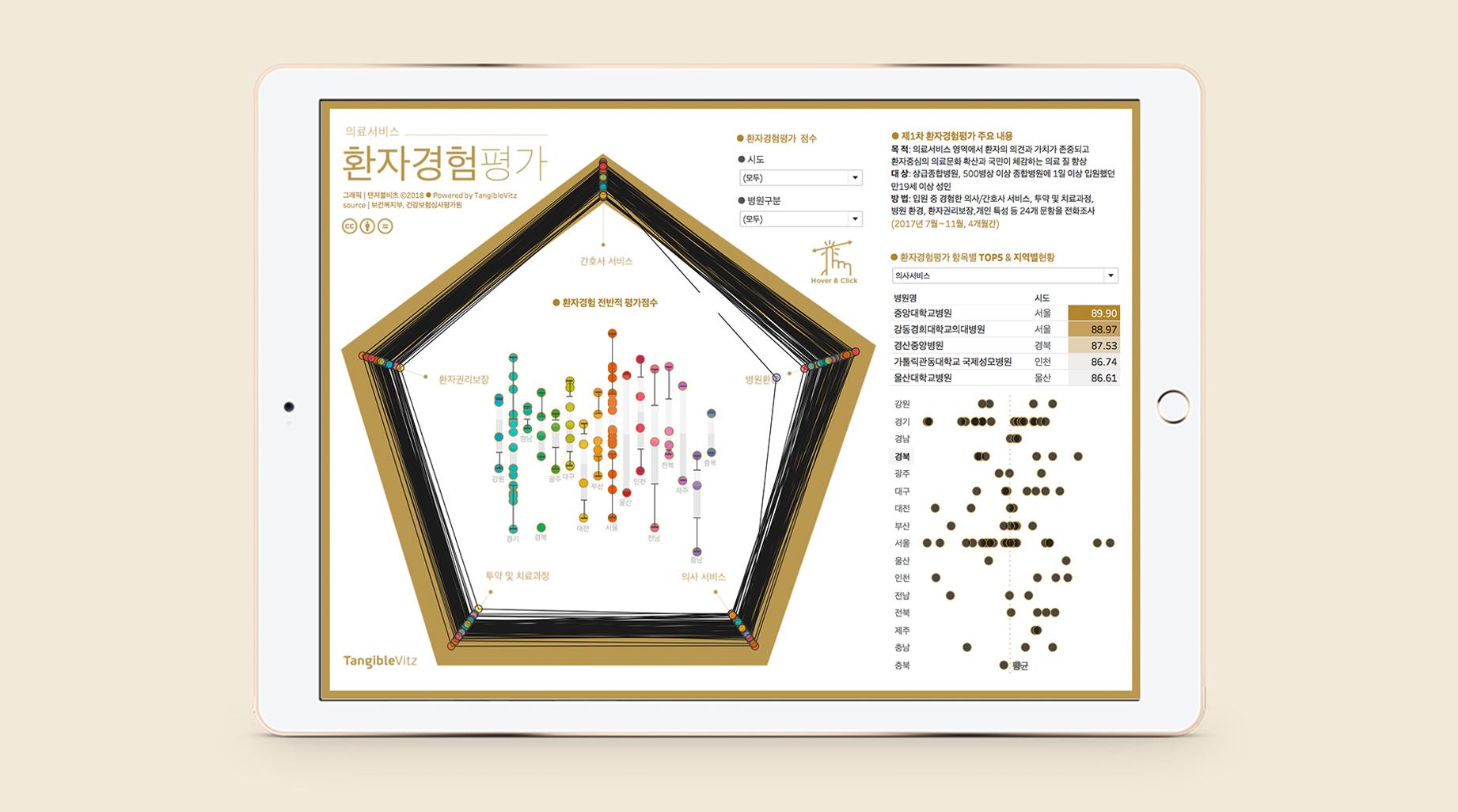 환자경험평가 데이터시각화 by 탠저블비츠