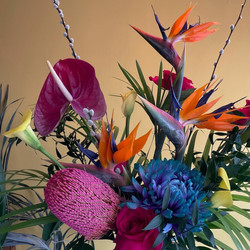 Shirley Blossoms Arrangements