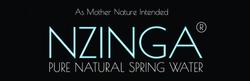 Nzinga Logo Original High Res