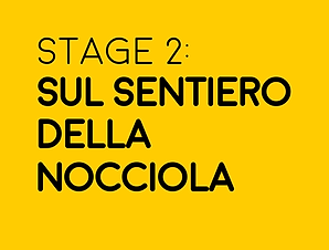 STAGE2.png
