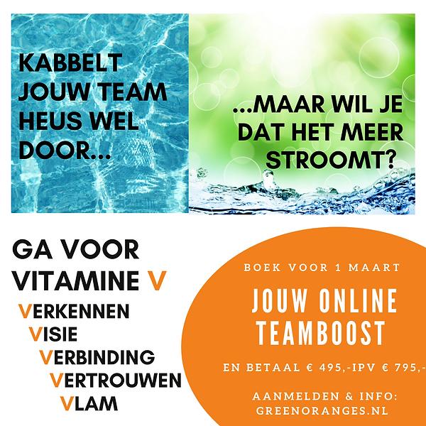 Vitamine V als team.png