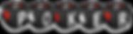 pokerwallet_logo2.png