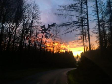 A nos belles Ardennes !!