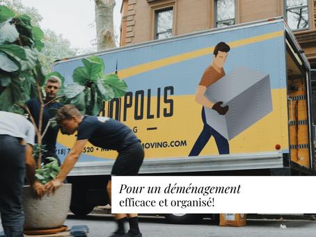 Pour un déménagement efficace et organisé!