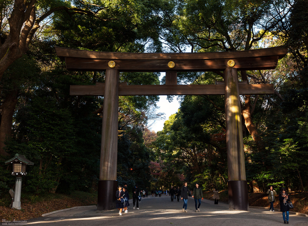 TokyoGate.jpg