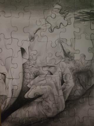 Puzzle (2020, 8x12, Graphite)