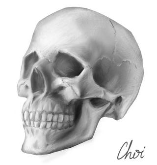 Skull (2020, Digital)