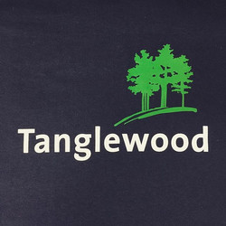 Are you amping up for summer_ We are! #summer #bluepointdesign #customprinting #tanglewood #berkshir