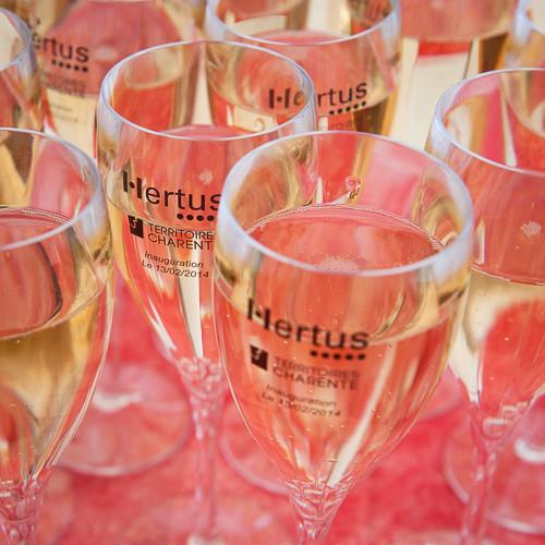 2014-006 TC_Inauguration Hertus-103.JPG