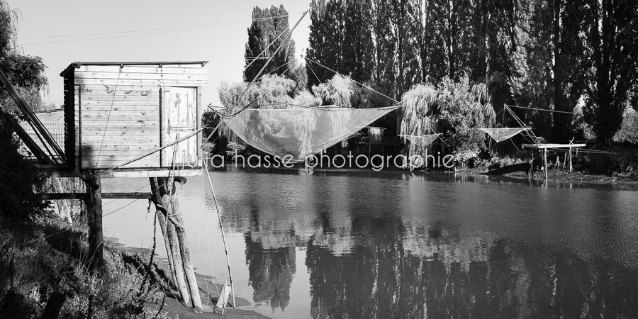 2015-08-CharenteMaritime-StSavinien-66