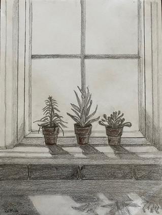 Best Drawing - Morning Light
