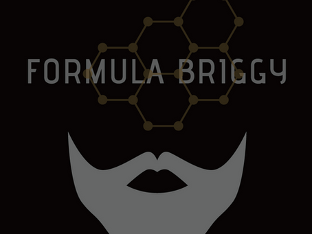 ABOUT FORMULA BRIGGY