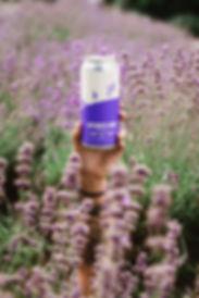 Lavender Sour-2.jpg
