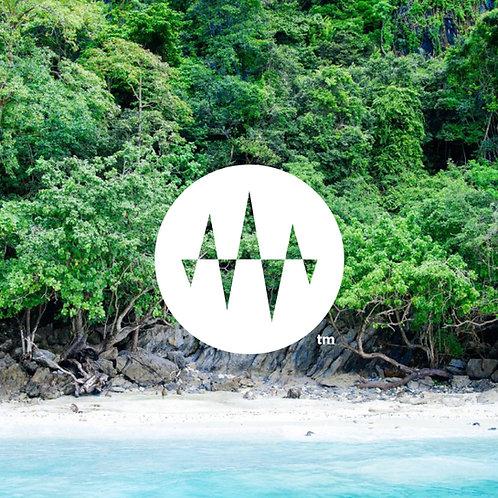 【NEW】Miyakojima morning forest 癒心(宮古島の森 Binaural recording)