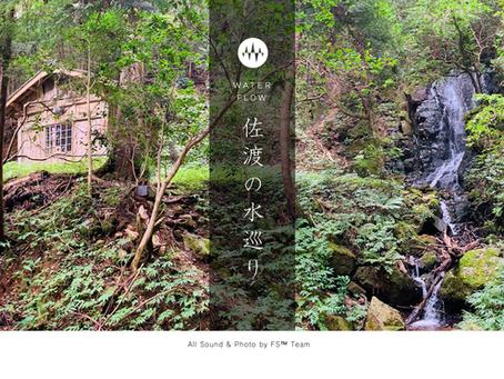 「FS™ WATER FLOW 佐渡の水巡り」期間限定価格&特典シークレット音源2曲も3月7日(日)迄です!