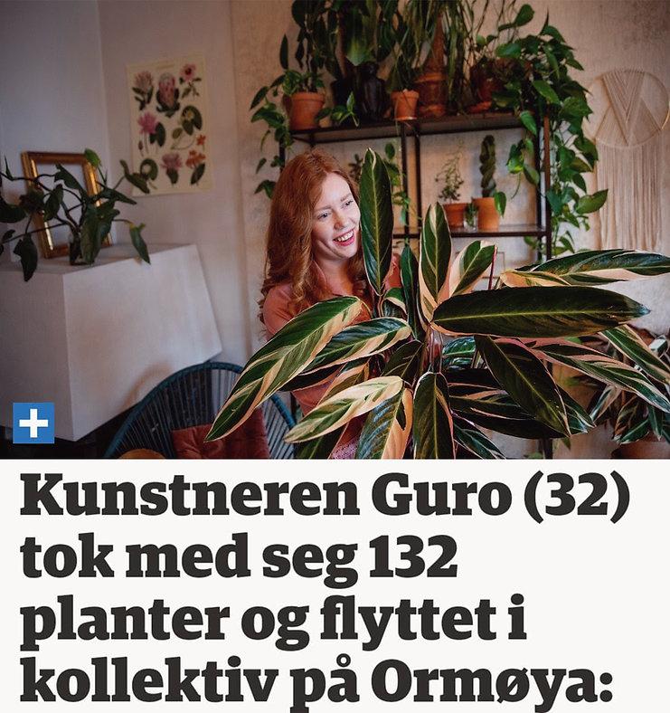 nordstrandblad.jpg