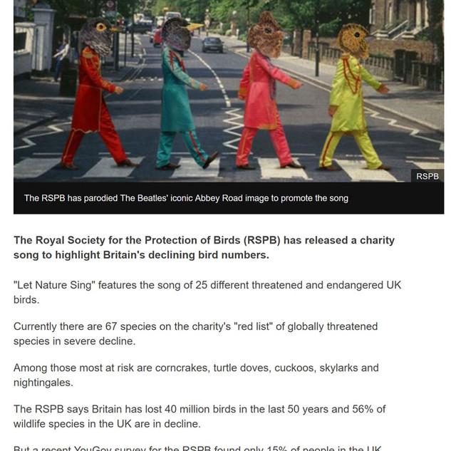 BBC-article-MD.jpg
