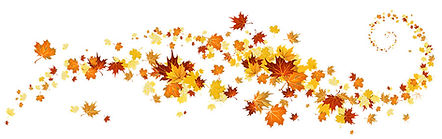 Autumn-fall-leaves-.jpg