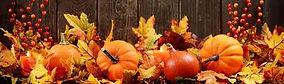 pumpkin & leaves.jpg