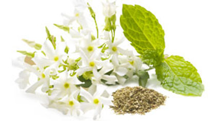 Mint & White Jasmine