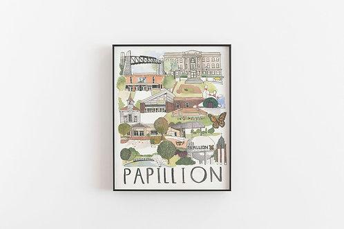 """""""Papio""""- Papillion"""