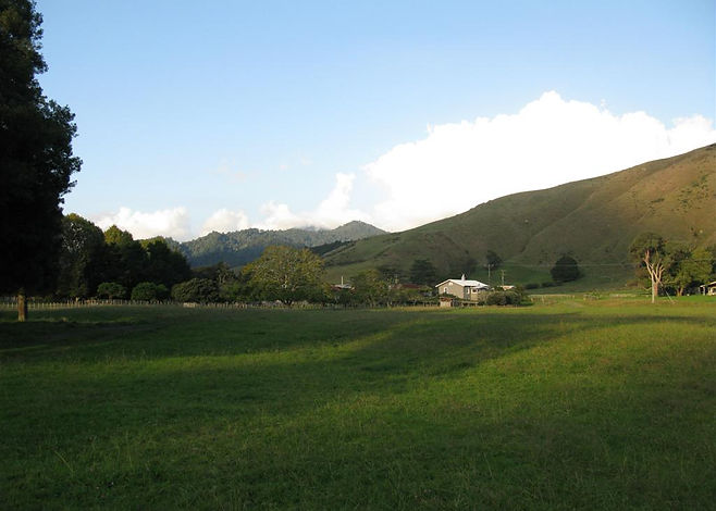 New Zealand Farm stay scenery