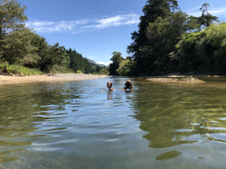 The farm swimming hole in the Kauaeranga river
