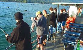 Mussel Barge Snapper Safaris.jpg