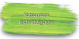 Recursos_Estratégicos.png