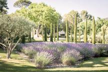 Domaine-de-Fontenille-hotel-Provence-jar