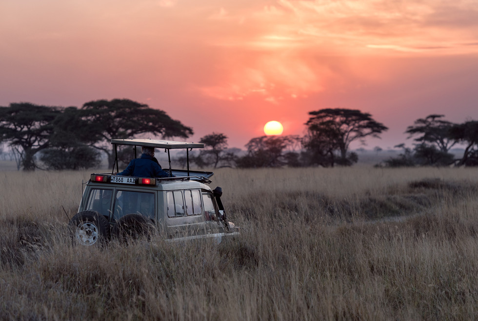 Voyage sur mesure Tanzanie Safari Serengeti coucher soleil savane