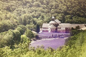 Abbaye-de-Senanque-Luberon.jpg