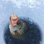 crappie in ice.jpg