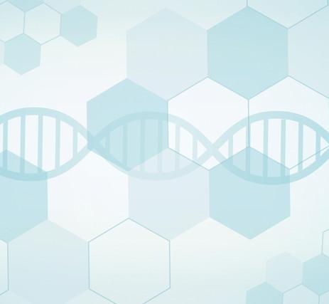 高品質な高濃度水素を吸入することで、 体の細胞を活性化します