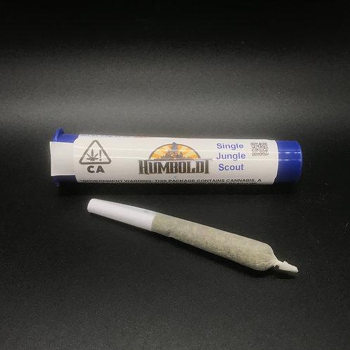 Humboldt Premium Cannabis Single Jungle Scout (19.59% THC) .6g