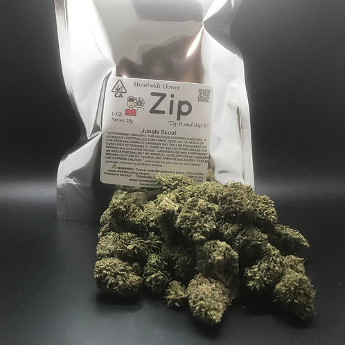 Zip 1oz Jungle Scout (19.59% THC) 28g