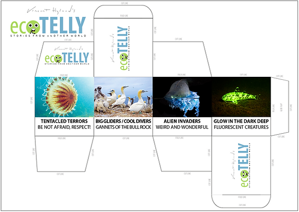 ecotelly_template_1.png