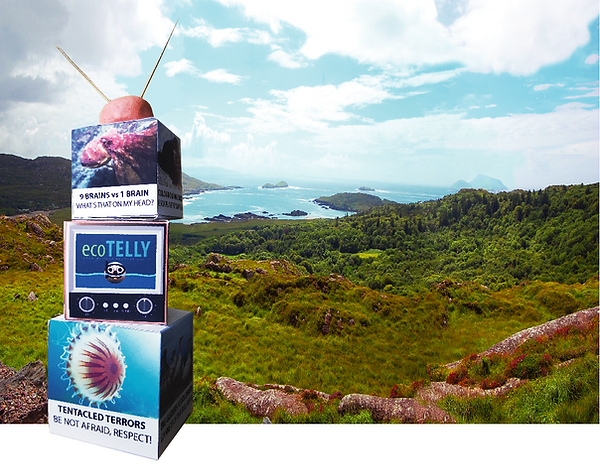 Screenshot 2020-12-10 at 11.58.25.png