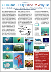 Screenshot 2019-07-09 at 11.20.05.png