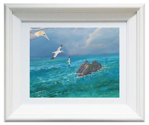 Returning Home to Skellig (Fine Art Print)