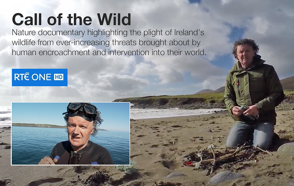 Screenshot 2020-07-10 at 07.57.18.png